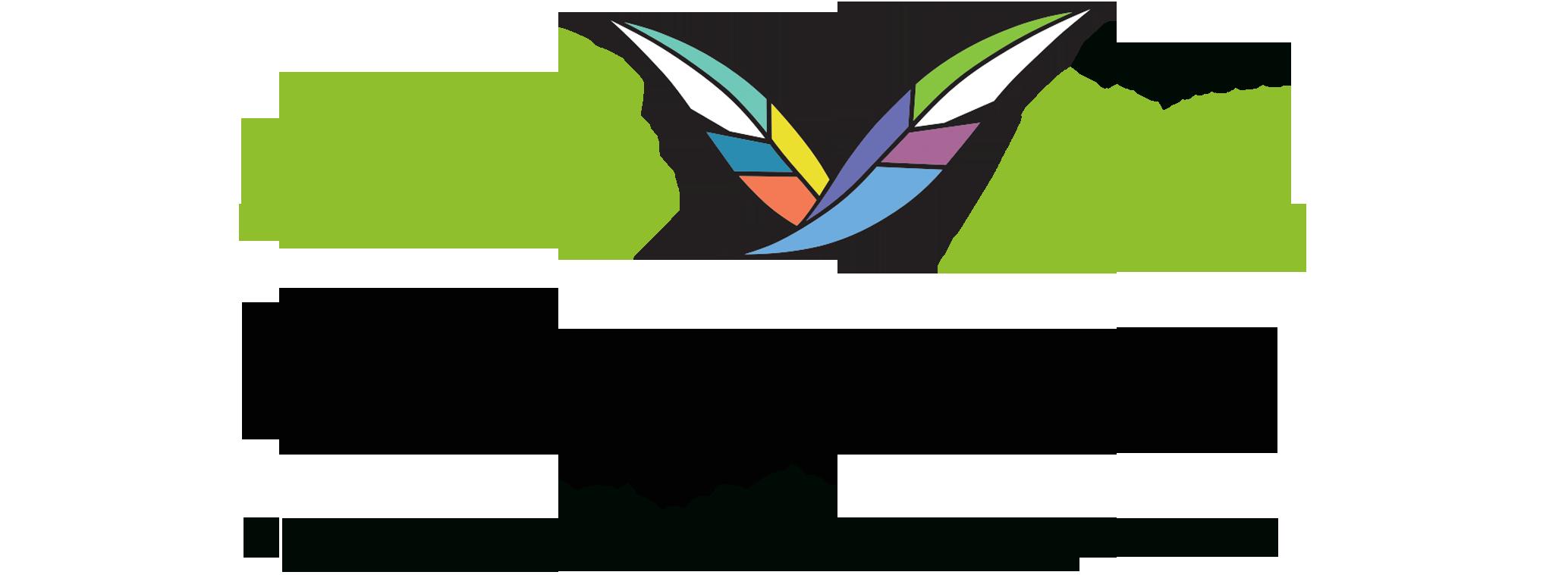 Лого new_цветной